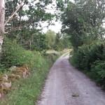 Cykelväg mot Bertilstorp